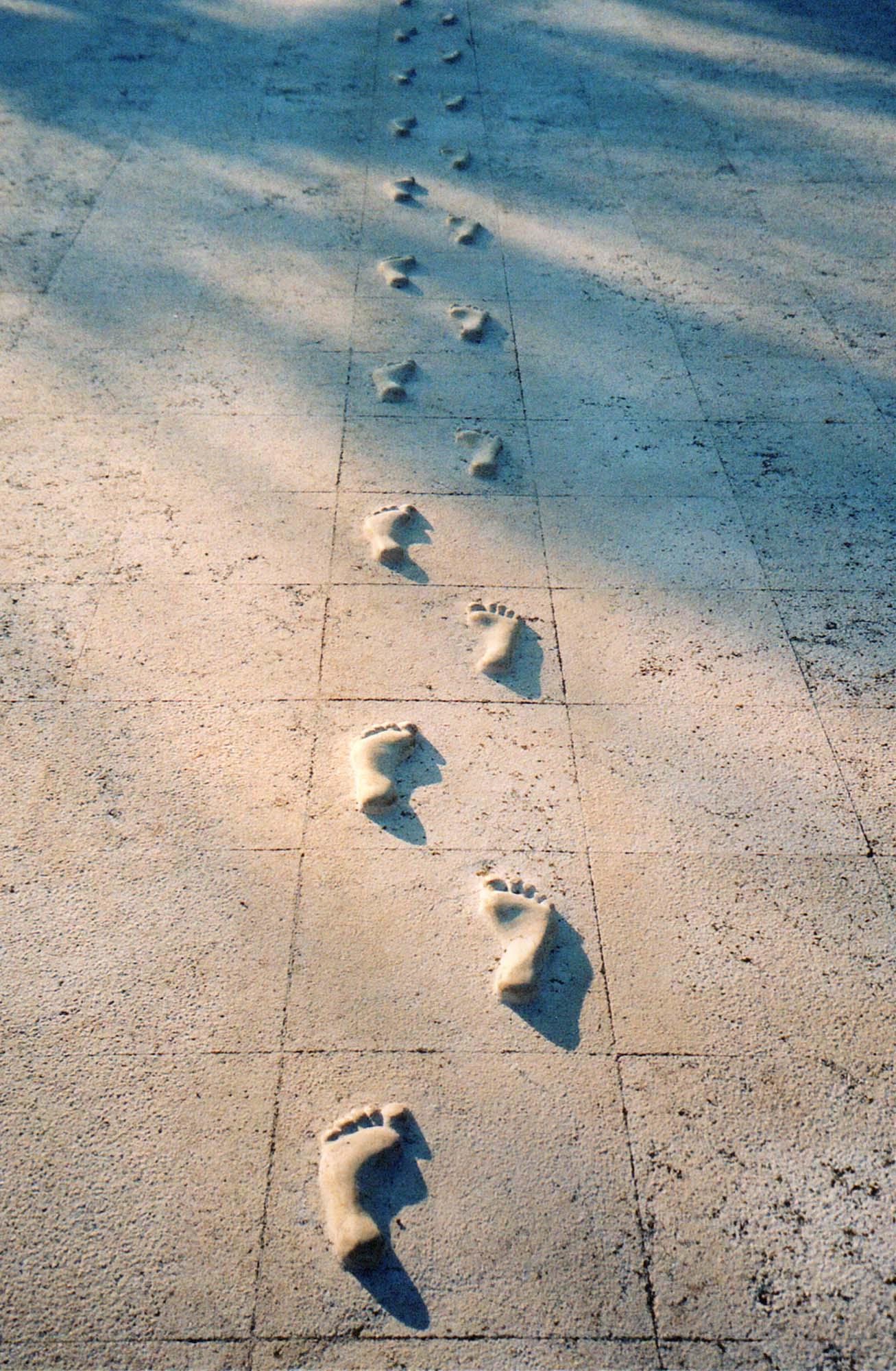 Nikola Džaja, Tragovi – u potrazi za izgubljenim vremenom, 1998.