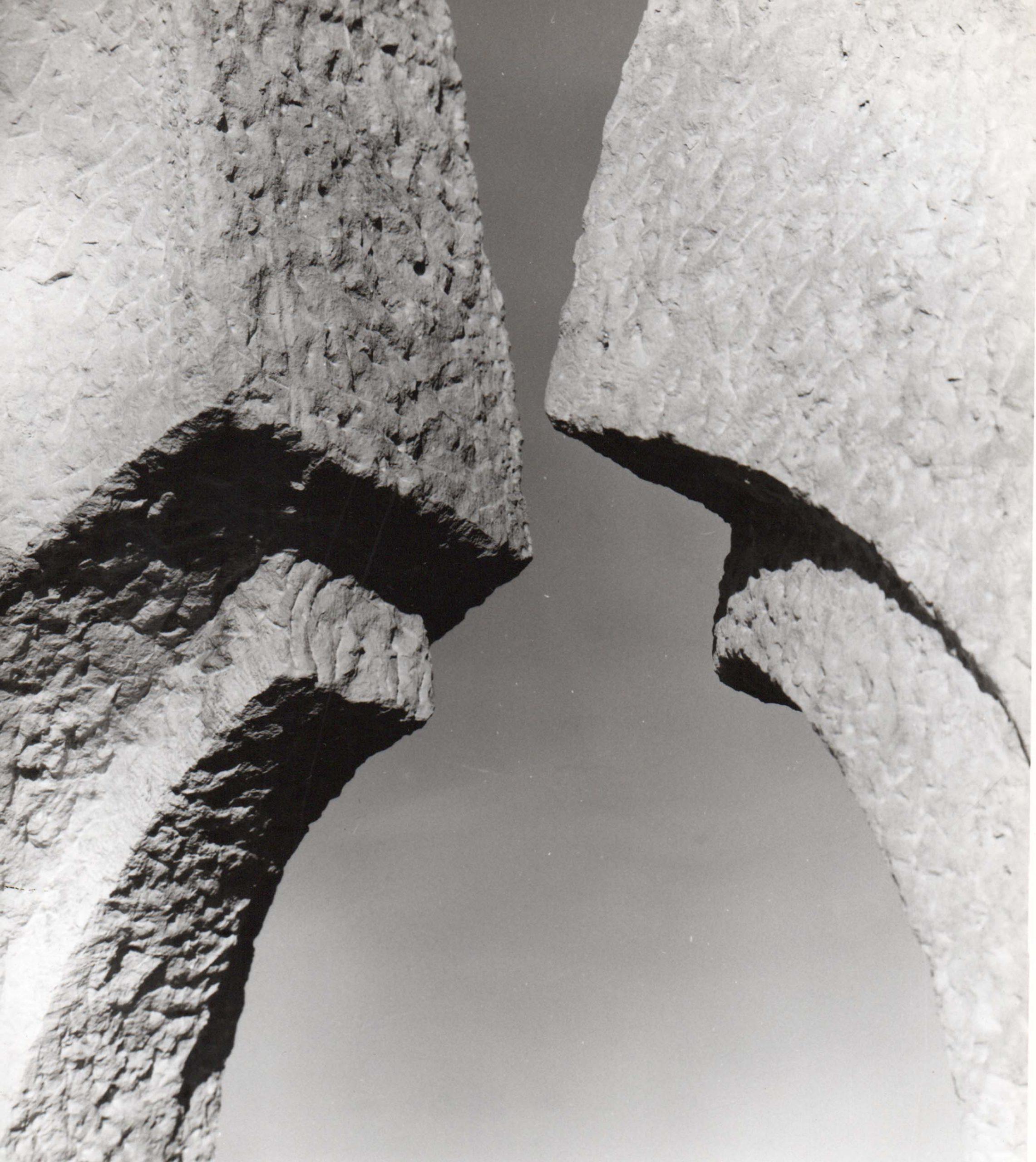 Luciano Ceschia, Cipressi, 1971