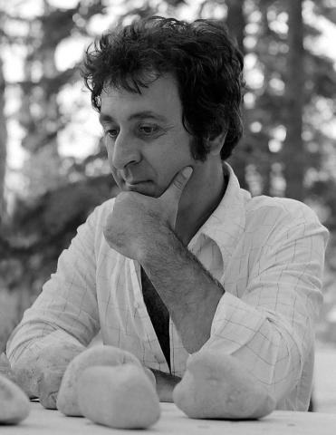 Miroslav Šutej, Composizione, 1977