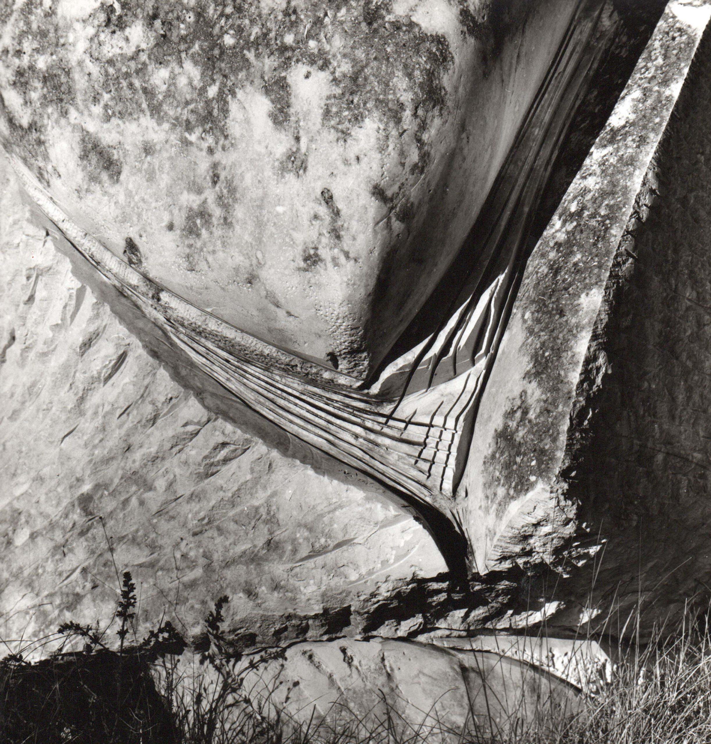 Nicola Zamboni, Accettazione, 1972