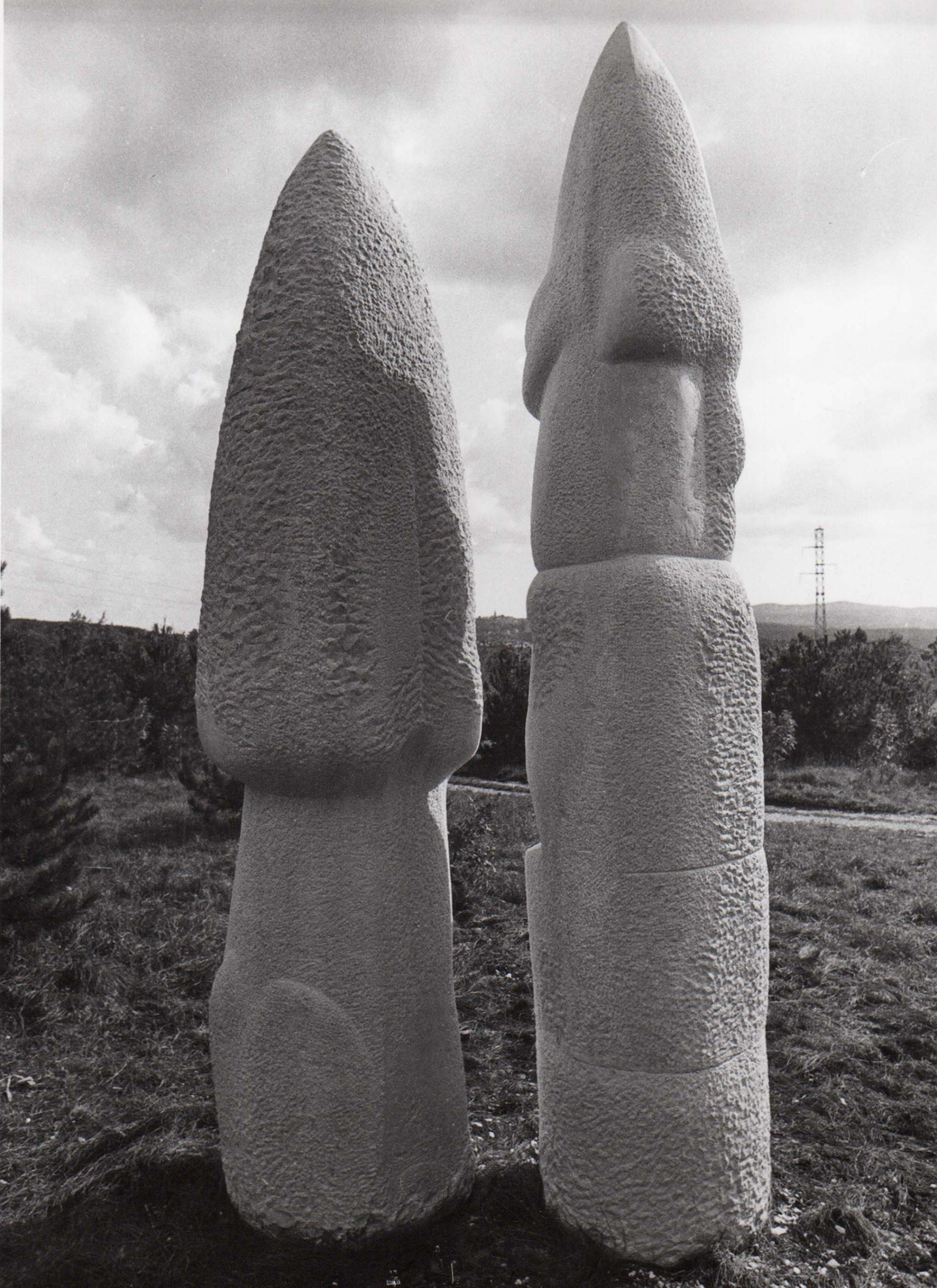 Zvonimir Kamenar, Kralj i Kraljica, 1993.