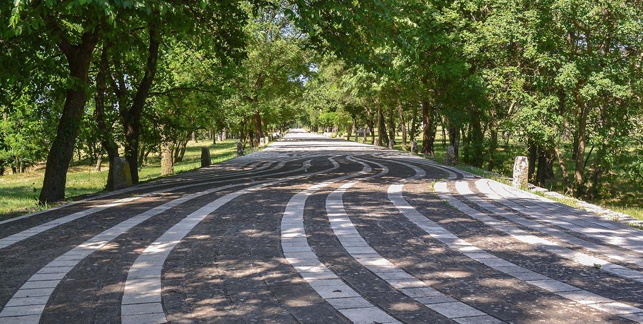 Bijela cesta