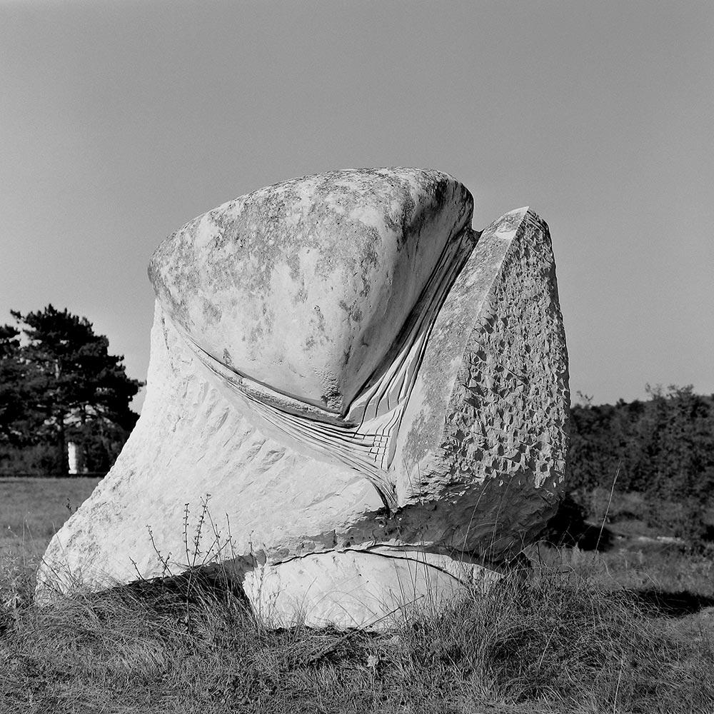 Nicola Zamboni, Prihvat, 1972.